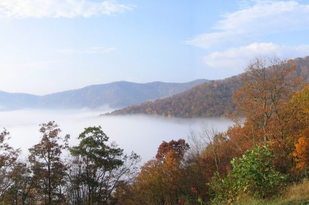 Asheville, NC Insurance Agency, fog over a valley of orange autumn colored leafy trees.