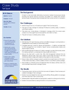 Case study for a daycare insurance client, Tot Spot.