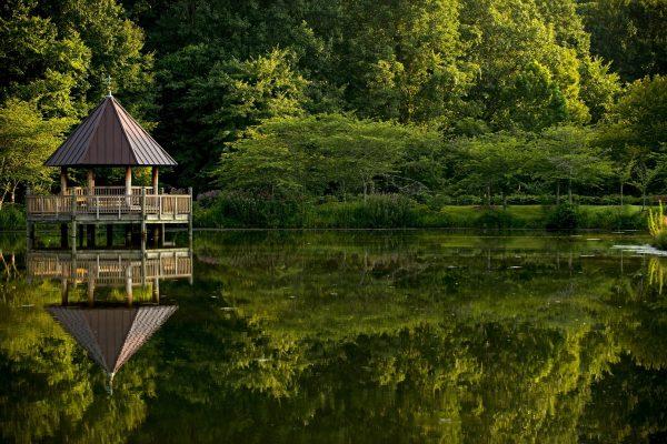 Fairfax, VA Meadowlake Botanical Gardens, lake view of gazebo over lake with reflection of lush greenery on surface.