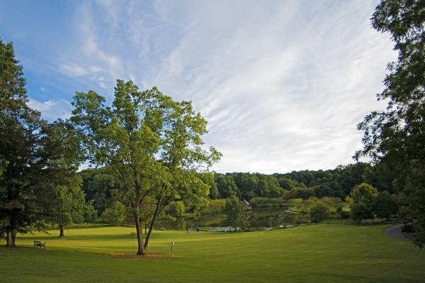 Fairfax, VA park view of green meadow before lake.