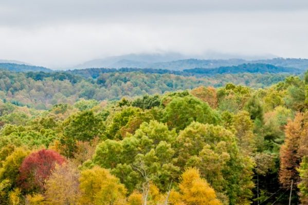 Roanoke, VA view of Roanoke Valley showcasing lush greens and autumn yellows and reds of the trees.