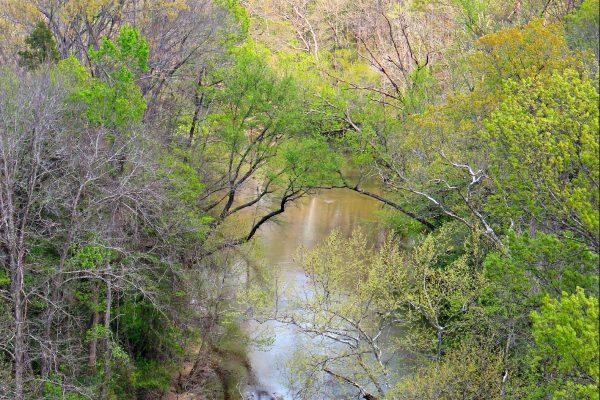 Appomattox River