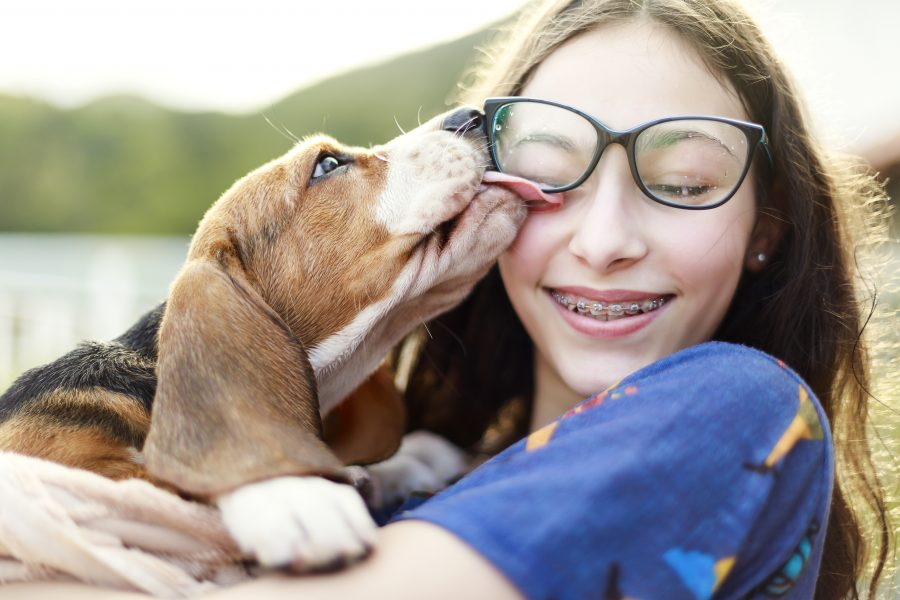 Home insurance red flags, a young girl playing with her dog, licking her face.