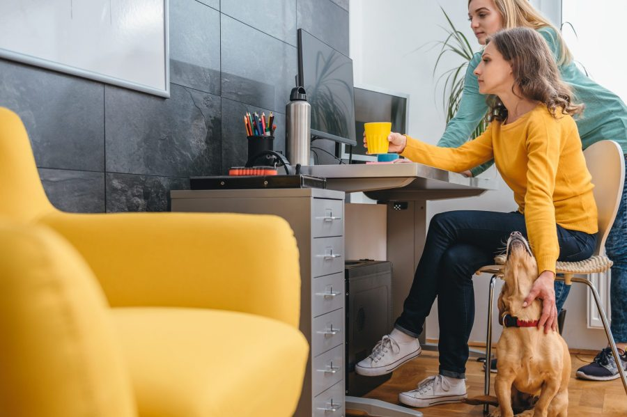 Home insurance red flags, a woman working from home at a desk.