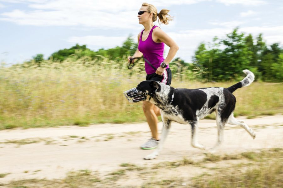 Woman running with large black and white dog.